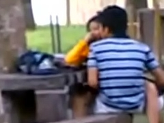 Indian Academy Students Fucking in public park Voyeur Recorded by people